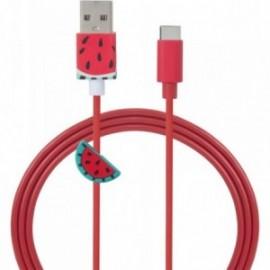 Câble USB A/USB type C